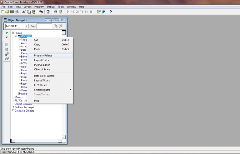 Picture 1: Change Module Name in Oracle Forms 11g